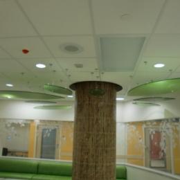 Riley's Children Hospital